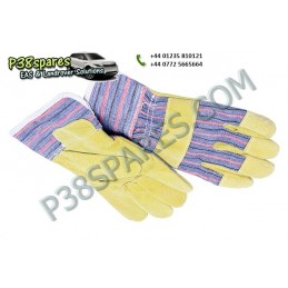 Gloves -   Winching -  All Models