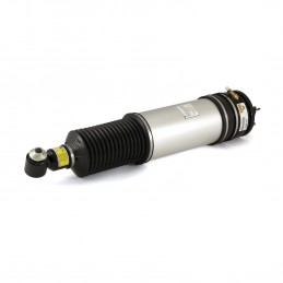 Rear Left Arnott Air Suspension Strut with Spring Bag BMW 7 Series E65 & E66 With EDC 2001-2008 www.p38spares.com  2832 - AS-268