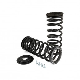 Rear Arnott Air To Coil Conversion Kit Land Rover Discovery 2 1998-2004 Arnott Inc supplied by p38spares air, rear, spring, ba
