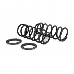 Rear Lexus GX470 Toyota Prado EAS Air To Coil Spring Conversion Kit 2002-2009