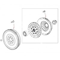 Clutch Plate & Parts